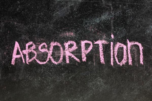 Absorption rates Nanaimo