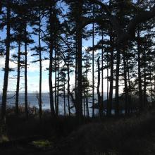 Nanaimo beach