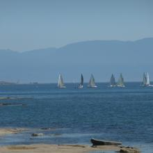 Sailboat racing