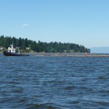Tugboat near Nanaimo
