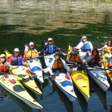 Sealegs Kayaking Adventures